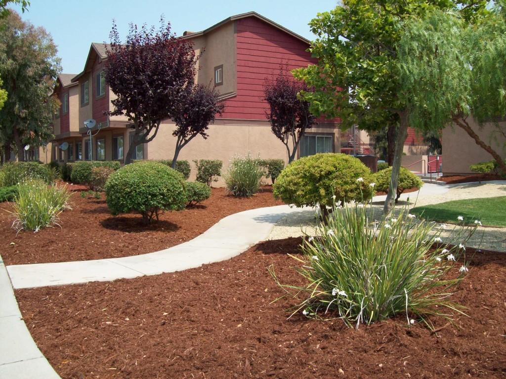 CHISPA: Jardines De Soledad