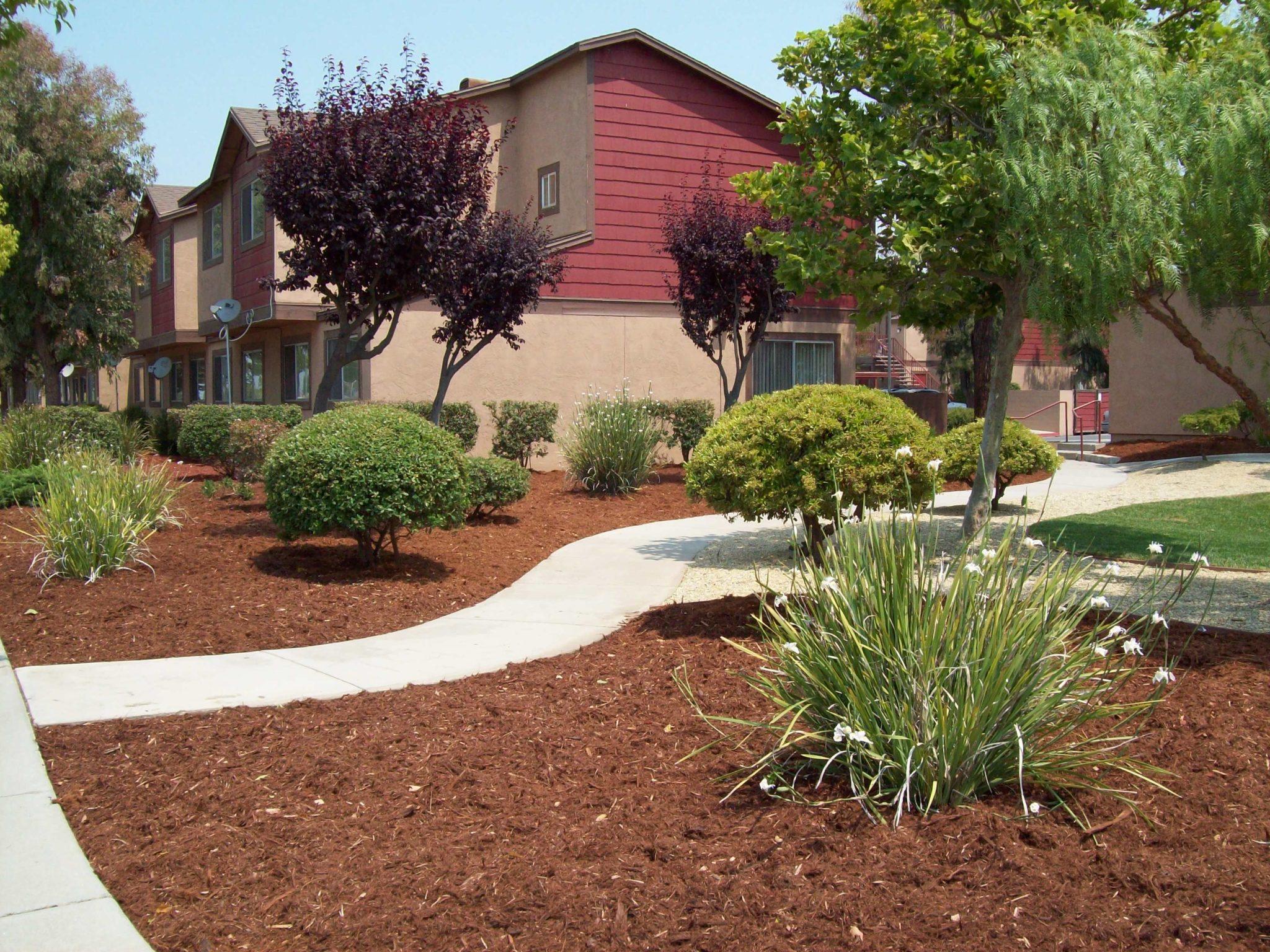 Chispa | Jardines de Soledad